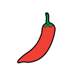 Chili pepper vegetable icon image vector