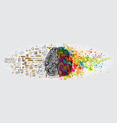 left right human brain concept creative part and vector image
