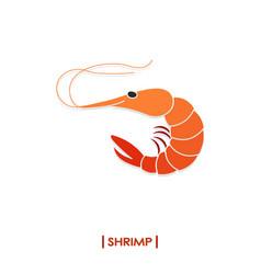 shrimp icon isolated on white background vector image