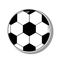 Soccer Ball sport vector image vector image