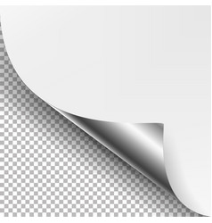 Curled silver metalic corner  white paper vector