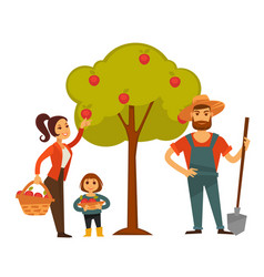 people gather fruit harvest farm vector image