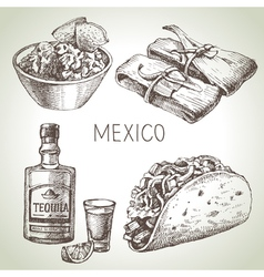 Mexican traditional food hand drawn sketch  vector