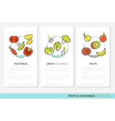 Fruits and Vegetables Thin Line Business Brochures vector image vector image