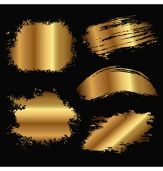 gold stain vector image vector image