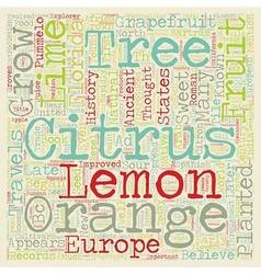 History Of Citrus text background wordcloud vector image vector image