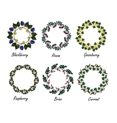 Set of berry frames - wreath vector image vector image