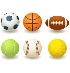 team sport balls vector image vector image