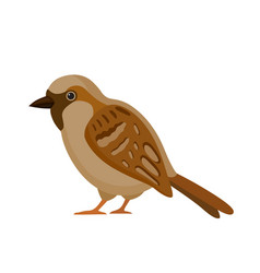 Bird with motley feathers isolated vector
