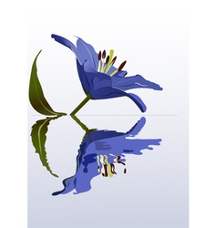 flower poster vector image