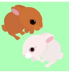 rabbit white and brown cartoon animal isolated vector image vector image