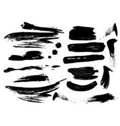Detail brush paint stroke collection vector