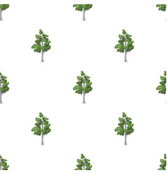 Birch tree icon in cartoon style isolated on white vector
