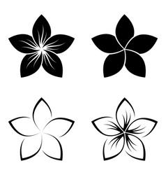 frangipani silhouette vector image