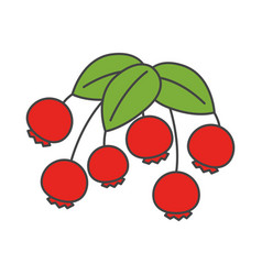 cartoon wild berries with leaves vector image vector image
