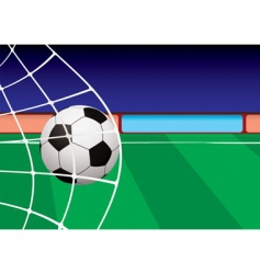 football pitch goal vector image