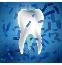 Teeth Hygiene 05 A vector image vector image