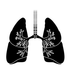 Human lungs anatomy medical science internal organ vector