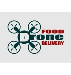 Drone quadrocopter icon drone food delivery text vector