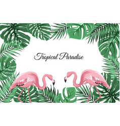 tropical border frame green leaves pink flamingos vector image