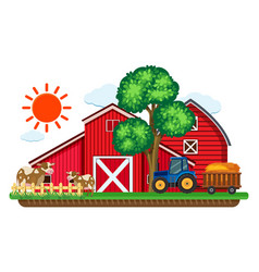 Big red barns and two cows in the farm vector