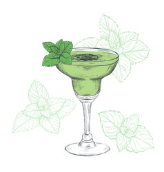 mint cocktail sketch vector image vector image