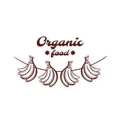 organic food bananas monochrome emblem vector image vector image