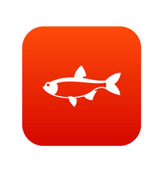 rudd fish icon digital red vector image