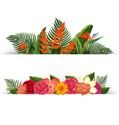 two design of flower decorations vector image