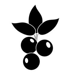 Blueberry leaves diet pictogram vector
