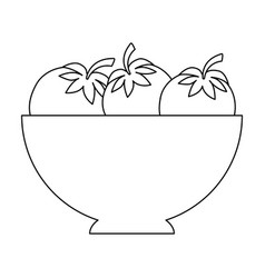 Bowl with tomatoes icon vector