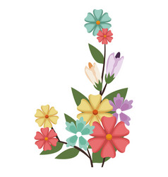 Beautiful floral bouquet bunch arrangement vector