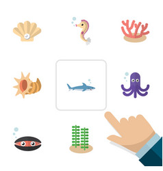 Flat icon marine set of scallop shark tentacle vector