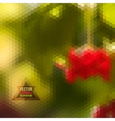 Nature pattern of geometric shapes vector image