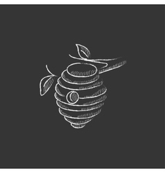 Bee hive drawn in chalk icon vector
