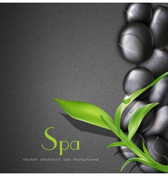 Background of a spa with stones vector