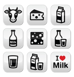 Dairy products - milk cheese buttons set vector image