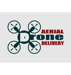 quadrocopter icon Drone aerial delivery text vector image vector image