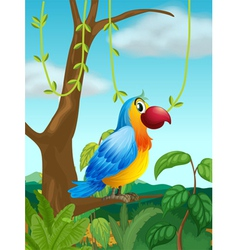 A colorful parrot at the branch of a tree vector