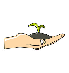 Plant to hand cartoon icon on white background vector