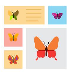 Flat butterfly set of butterfly danaus plexippus vector