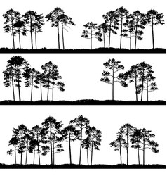 landscapes with pine trees vector image vector image