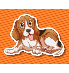 Little puppy sitting on orange background vector