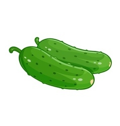 Couple cucumber vector