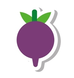 beet vegetable healthy icon vector image