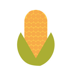 corn vegetable isolated icon vector image vector image