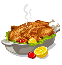 Roasted baked chicken vector