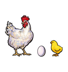 White egg chick and rooster sketch set vector