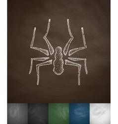 Spider icon hand drawn vector