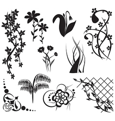 floral design elements - set vector image vector image